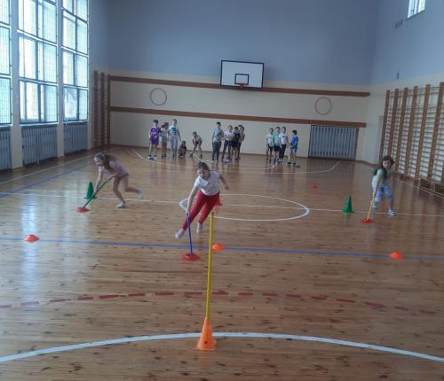 sport23